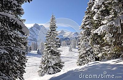 Majestic Alpine view