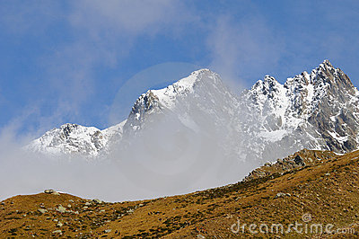 Majestic snowy mountain and herd of Red Deers