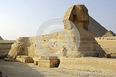 Majestic Sphinx