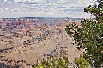 Majestic Vista of the Grand Canyon