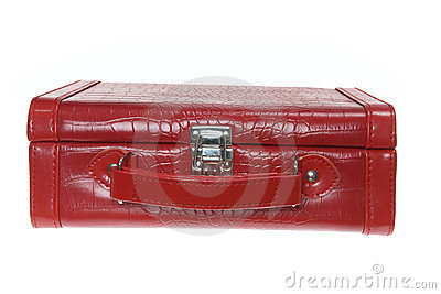 Makeup Carry Bag