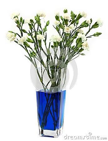 Free Making Blue Carnations Royalty Free Stock Image - 22404246