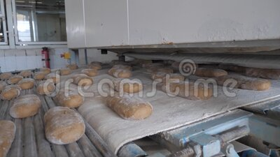 Making bread at the bakery. The process of making bread at the bakery stock video footage