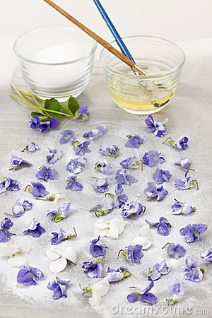 Free Making Candied Violets Stock Photo - 36569350