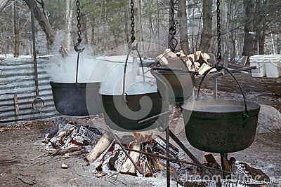 Boiling Maple Sap to Make Syrup