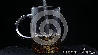 Makroschuß des Gießens des gekochten Wassers in den Teeblättern in der Glasschale Brauen des schwarzen Tees Makroschuß des Prozes stock footage