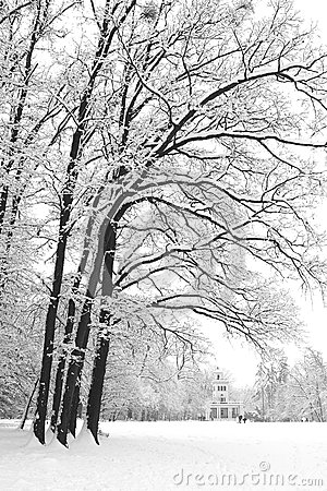 Maksimir Park in the winter.