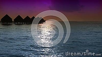 maldives Huizen op stapels op water bij de tijdzonsondergang stock video