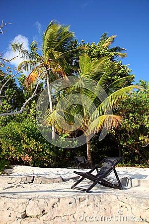 Free Maldives Island Stock Photo - 3674740