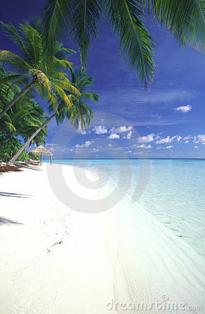 Maldives lagoon and tropical beach