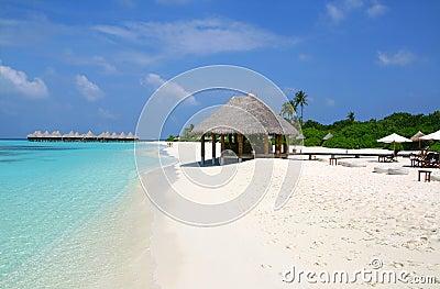 Maldives, ocean landscape