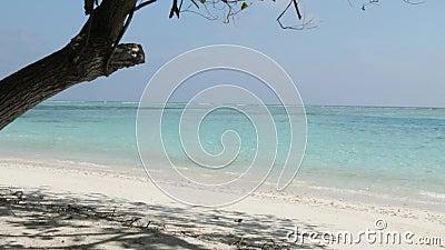 Maldives : Plage et sable blanc Océan Indien et ciel nuageux banque de vidéos