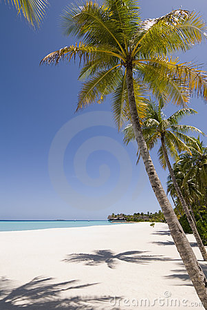 Free Maldives Seascape Stock Image - 5332971
