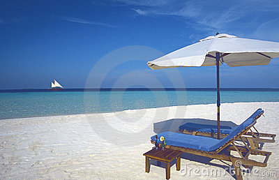 Maldives tropical beach and Sun loungers