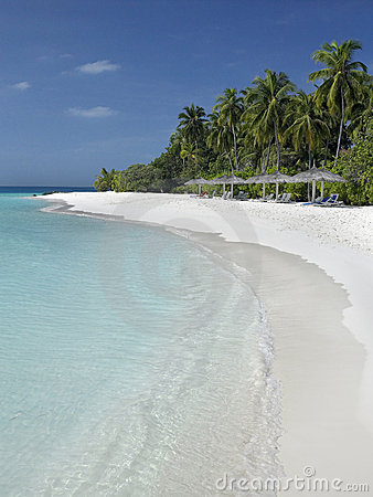 Maldives - Tropical Island