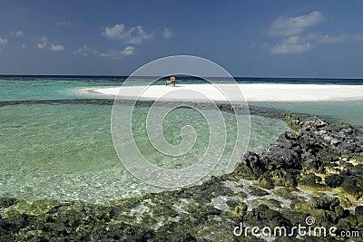 Maldives - Wish you were here