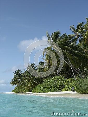 Maldivian island coast