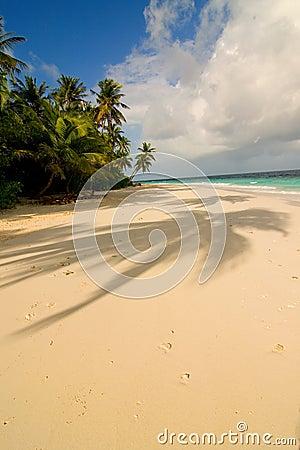 Free Maldivian Sand Beach Stock Images - 4011334