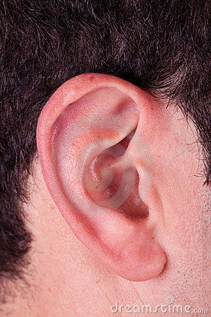 Male Ear Stock Photos Image 9037503