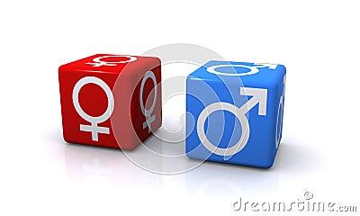 Male and Female Gender Symbols