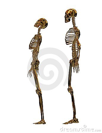 Male and Female Golden Skeletons