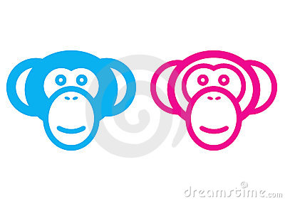Male and female monkey