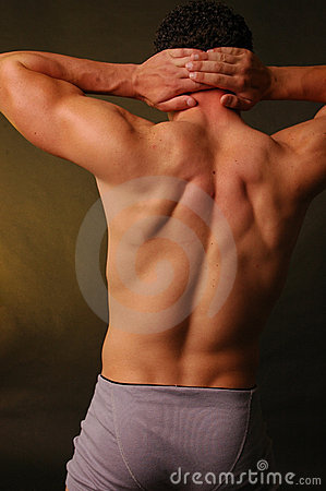 Male fitness back