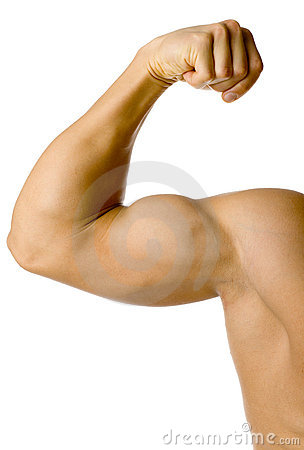 Free Male Flexed Arm Stock Image - 1906351