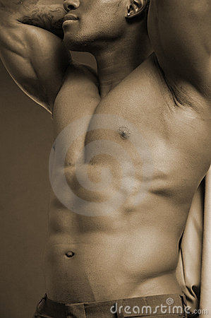 Male Form Stock Photography Image 662802
