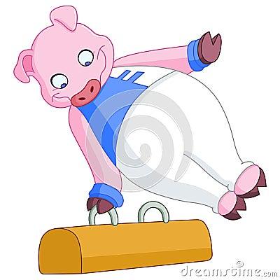 Male gymnast pig
