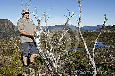Male hiker reading map in wilderness. Tasmania