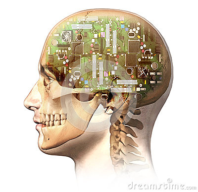 Free Male Human Head With Skull And Artificial Electron Royalty Free Stock Photo - 34770325