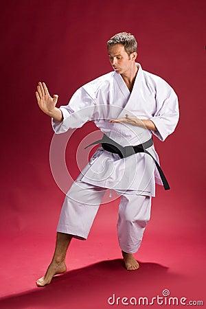 Male Karate Instructor