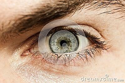 Male Macro Eye