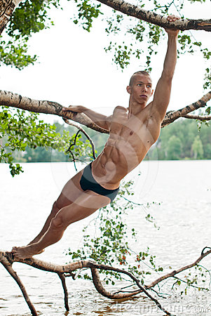 Male model on the tree