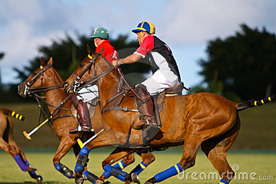 Male Polo Player Editorial Stock Photo