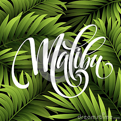 Free Malibu California Handwriting Lettering On The Palm Leaf Tropical Background. Vector Illustration Stock Photography - 71955842