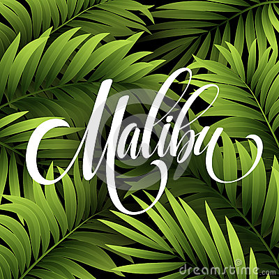 Free Malibu California Handwriting Lettering On The Palm Leaf Tropical Background. Vector Illustration Stock Photos - 71956943