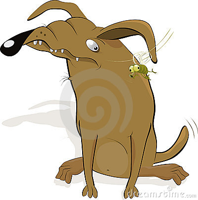 Malicious dog