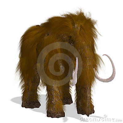 Free Mammoth Stock Images - 10877654