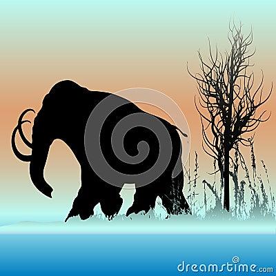 Free Mammoth Dawn Stock Image - 11164321