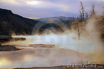 Mammoth Hot Springs Dawn