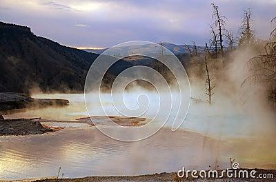 Mammoth Hot Springs Dawn
