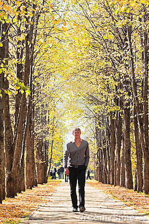 Man on alley in fall forest
