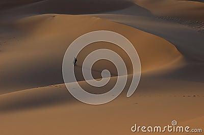 Man alone dune desert sahara