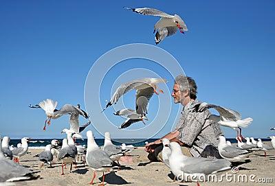 Man alone on white sand beach feeding birds