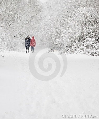 Free Man And Woman Walk In Snow Stock Image - 3441561