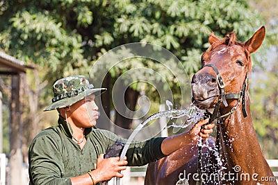Man Bathe horse with horse
