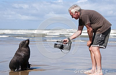 Man on beach with a seal