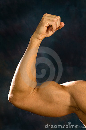 Man Biceps Muscles
